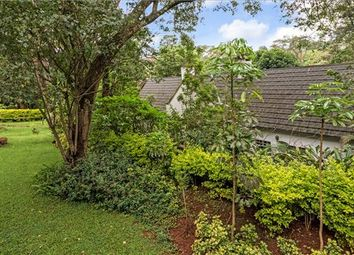 Thumbnail Property for sale in Rosslyn Lone Tree Estate, Off Limuru Road, Nairobi City, Kenya