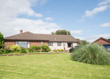 4 bed detached bungalow for sale in 55 Annerley Road, Annan, Dumfries & Galloway DG12