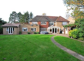 Thumbnail 6 bed detached house for sale in Golden Manor, Hanwell, London