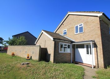 Thumbnail 4 bed semi-detached house to rent in Arden Grove, Norwich