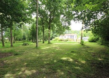 Thumbnail 1 bed bungalow for sale in Gardiners Lane North, Crays Hill, Billericay, Essex