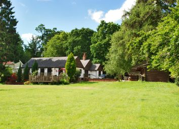 Thumbnail 4 bed detached house to rent in Burley, Ringwood, Hampshire
