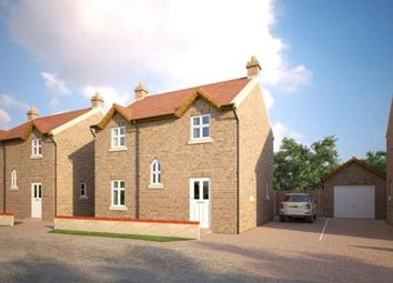 Thumbnail 3 bed detached house for sale in Bridge Street, Chatteris