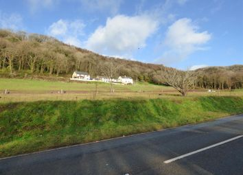 Thumbnail Land for sale in Llanmiloe Bach, Llanmiloe, Carmarthen