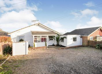 Thumbnail 4 bed bungalow for sale in Pine Avenue, Hastings, East Sussex