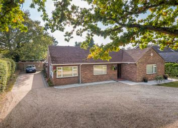 Thumbnail 3 bed detached bungalow for sale in High Road, Leavenheath, Colchester