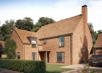 Thumbnail 5 bed detached house for sale in Long Lane, Stoke Holy Cross, Norwich
