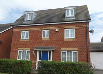 Thumbnail 5 bedroom detached house to rent in Lapwing Way, Soham, Ely