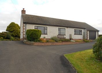 Thumbnail 3 bed bungalow to rent in Brydekirk, Annan