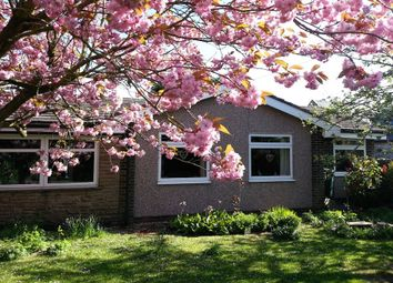 Thumbnail 3 bed detached bungalow for sale in Slaley, Hexham