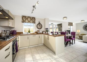 """Thumbnail 4 bedroom detached house for sale in """"Bradbury"""" at High Road, High Cross, Ware"""