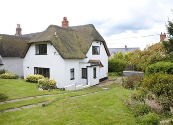 Thumbnail 2 bed cottage for sale in Farthings, The Street, Motcombe