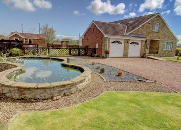 Thumbnail 5 bed bungalow for sale in Bamburgh Court, Chathill