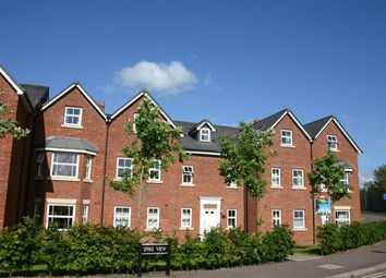 Thumbnail 1 bed flat to rent in Spire View, Salisbury