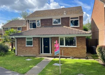 Thumbnail 4 bed detached house for sale in Longlands Way, Camberley, Surrey