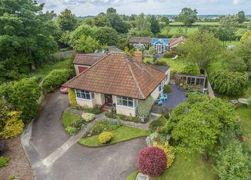 Thumbnail 4 bed detached bungalow for sale in Muchelney, Langport