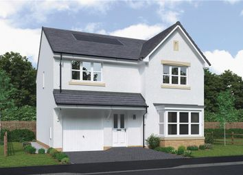 """Thumbnail 4 bedroom detached house for sale in """"Hartwood"""" at Bartonshill Way, Uddingston, Glasgow"""