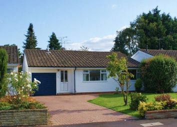 Thumbnail 3 bed detached house to rent in Wessex Gardens, Twyford, Reading