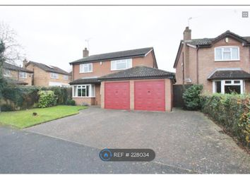 Thumbnail 4 bed detached house to rent in Mulberry Road, Rugby