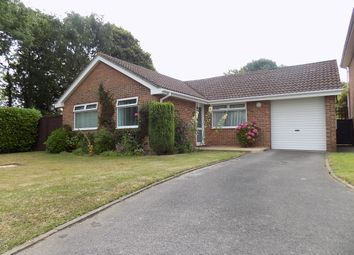 Thumbnail 3 bed detached bungalow for sale in The Warren, Holbury
