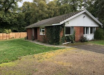 Thumbnail 4 bed detached house to rent in Woodham Lane, Woodham, Addlestone