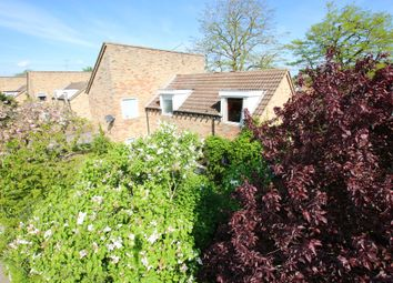 Thumbnail 4 bed detached house for sale in Mildenhall Road, Fordham
