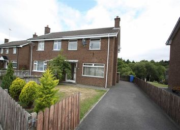 Thumbnail 3 bed semi-detached house to rent in Church View, Ballynahinch, Down