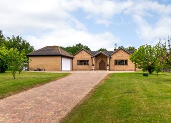 Thumbnail 4 bedroom bungalow for sale in East Hanningfield Road, Sandon, Chelmsford