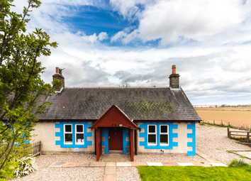 Thumbnail 2 bed cottage to rent in 1 Kincreich Mill Cottage Invereighty, Forfar