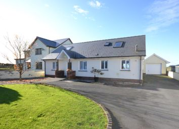 Thumbnail 5 bed detached bungalow for sale in Coed Y Bryn, Llandysul