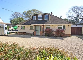 Thumbnail 4 bed bungalow for sale in Brook Avenue, New Milton