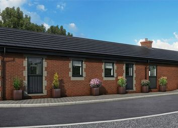 Thumbnail 3 bed detached bungalow for sale in Wellington Grove, Roby, Liverpool, Merseyside