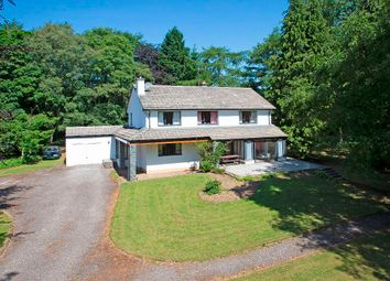 Thumbnail 4 bedroom country house for sale in Braeside, Dykes Of Gray Road, Liff, Dundee