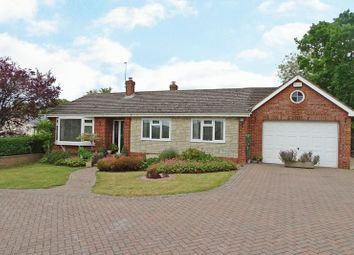 Thumbnail 4 bed detached bungalow for sale in Gomeldon, Salisbury