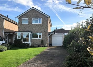 Thumbnail 3 bedroom link-detached house for sale in Butts Road, Ottery St. Mary
