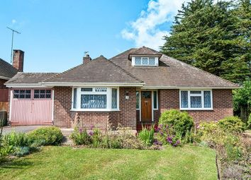 Thumbnail 2 bed bungalow to rent in Mill Close, Polegate