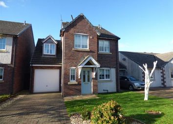 Thumbnail 4 bed detached house for sale in Houliston Avenue, Dumfries, Dumfries And Galloway