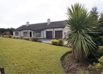 Thumbnail 5 bed detached bungalow for sale in Steeple Road, Antrim
