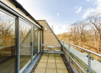 Thumbnail 3 bed property for sale in Pallister Terrace, Roehampton
