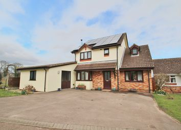 Thumbnail 5 bed detached house for sale in The Post Paddocks, Woolaston, Lydney