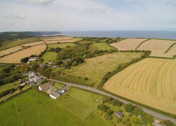 Thumbnail 4 bed property for sale in Horns Cross, Bideford