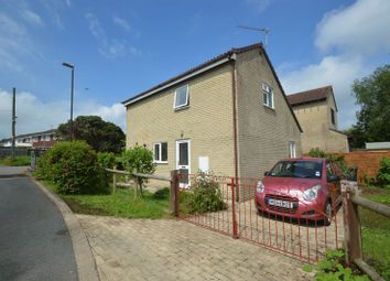 Thumbnail 3 bed detached house to rent in Michaels Way, Sling, Coleford