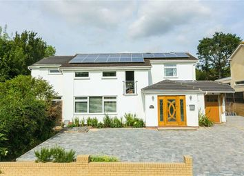 Thumbnail 4 bed detached house for sale in Green Meadow, Little Heath, Hertfordshire