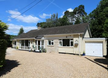 Thumbnail 4 bed detached bungalow for sale in Bridge Place Road, Camerton, Bath