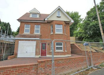 Thumbnail 4 bed detached house for sale in Bexhill Road, Ninfield, East Sussex