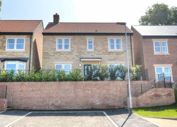 Thumbnail 3 bedroom detached house for sale in Willoughby Park, Alnwick