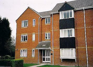 Thumbnail Property to rent in Lucerne Close, Cherry Hinton, Cambridge