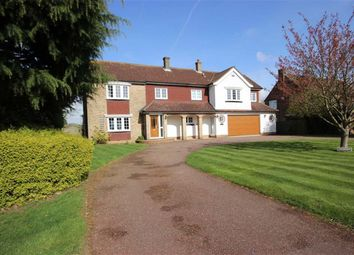 Thumbnail 4 bed detached house for sale in Spring Road, Harpenden, Hertfordshire