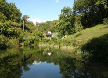 Thumbnail 4 bed property for sale in Tarn-Et-Garonne, France