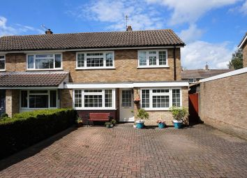 Thumbnail 4 bed semi-detached house for sale in Westwood Road, Loose, Maidstone